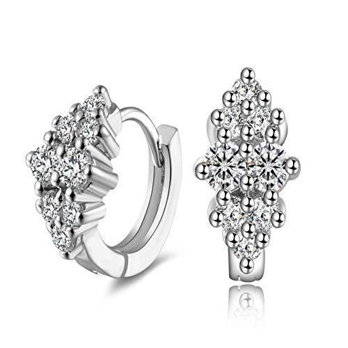 Shulishishop Pendientes de Las Mujeres Pendientes de Diamantes Pendientes de Plata esterlina Aretes de Platino Pendientes de Brillantes Útil Pendientes