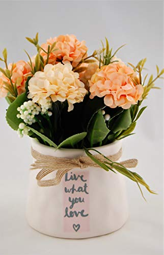 Homevibes Flores Artificiales con Maceta De Ceramica con Frase, Hortensias, Medida 9x17cm, Ideal para Decoracion del Hogar Interior o Exterior (Blanco y Hotensias Naranjas)