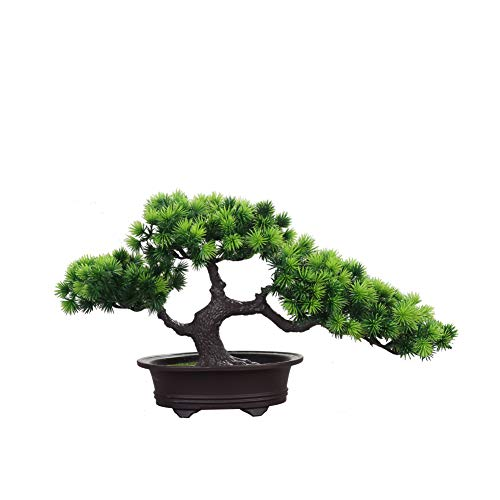 Home Hochzeit Lucky Dekoration Deko Pflanze,Feng Shui Deko,Japanischer Pinien,Höhe ca. 20 cm,Green, 19