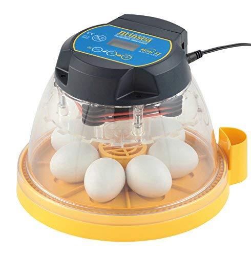 Brinsea Mini II Advance Egg Incubator