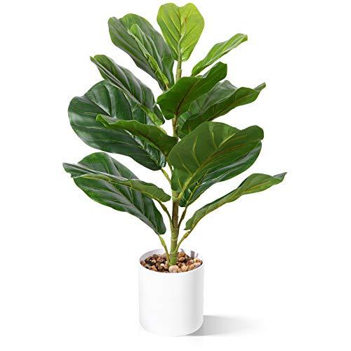 CROSOFMI Künstliche Pflanze im Topf Ficus Lyrata 55 cm Kunstpflanze Plastik Zimmerpflanze Groß Wohnzimmer Balkon Schlafzimmer Grün Deko(1 Pack)