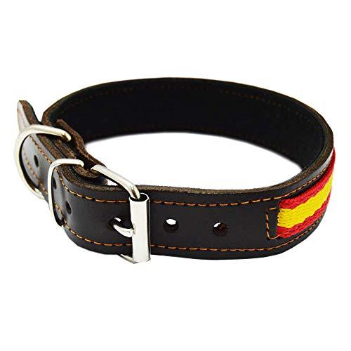 Tiendas LGP - Collar para Perros de Piel Flor con Bandera de España. 2,5 x 53 cm, Marrón