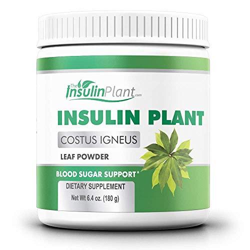 Insulin Plant Leaf Powder (Costus Igneus) - Blood...
