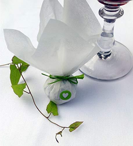 Die Seedball-Manufaktur, Apfel Seedball Gastgeschenk mit Herz, Weißes Seidenpapier mit hellgrüner Bastschleife, 2,5 x 2,5 x 6 cm