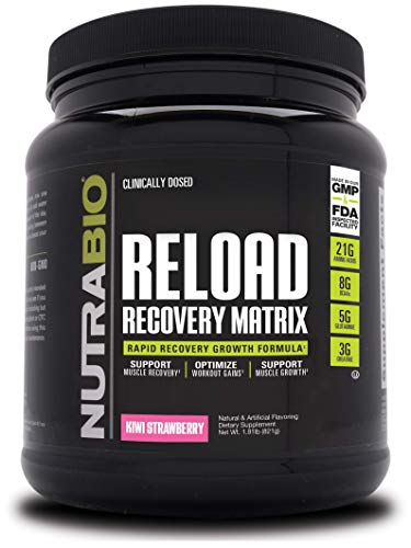 NutraBio Reload - Powerful Muscular Recovery Formula - Post-Workout Supplement - 3G Creatine - 8G BCAAs - 5G Glutamine - 30 Servings, Kiwi Strawberry