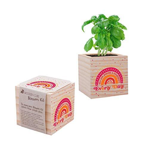 Cheersville Desk Plant for Office or Classroom Decor - Growing Kit - Teacher Appreciation Plant Cube (Basil 2)