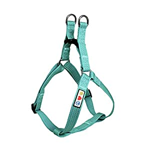 Pawtitas Reflective Step in Dog Harness or Reflective Vest Harness, Comfort Control, Training Walking of Your Puppy/Dog Extra Small Dog Harness XS Teal Dog Harness