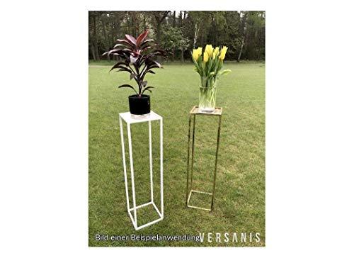 Blumensäule Blumenständer Ständer Universal modern Versanis 486 (Schwarz Halb Matt)