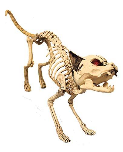 0207VP1L3IG I Love Fancy Dress ilfd187 Chat Squelette articulé Halloween Prop avec Light Up Yeux et Son Taille Unique