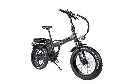 R RATTAN 750W 500W 20Inch Folding Electric Bike I-PAS 7 Speed 48V 13AH Removable Lithium Battery 4.0/3.0 All-Terrain Fat Tire 4.3' LCD Display Beach Commute Bicycle Couple Models E-Bike