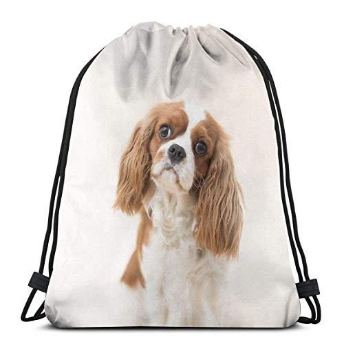 XCNGG Cavalier King Charles Spaniel Blenheim Waterproof Foldable Sport Sackpack Gym Bag Sack Drawstring Backpack