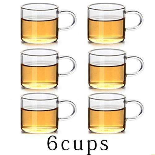 FUYIO 5 tamaños Buena Tetera de Vidrio de borosilicato Transparente con colador de infusor de Acero Inoxidable 304, Juego de hervidor de Agua, cafetera, Tetera, 6 Tazas