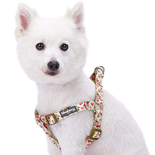 Blueberry Pet Spring Scent Harness
