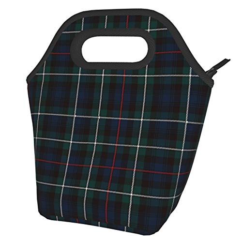 Tartan Plaid Lunch Bag Tote Bag Lnsulated Lunch Cooler Bag for Women/Men Lunch Box Tote Bag Snacks Organizer Lunch Holder for Women Men Office Work School Beach Party Boating Fishing Picnione Size