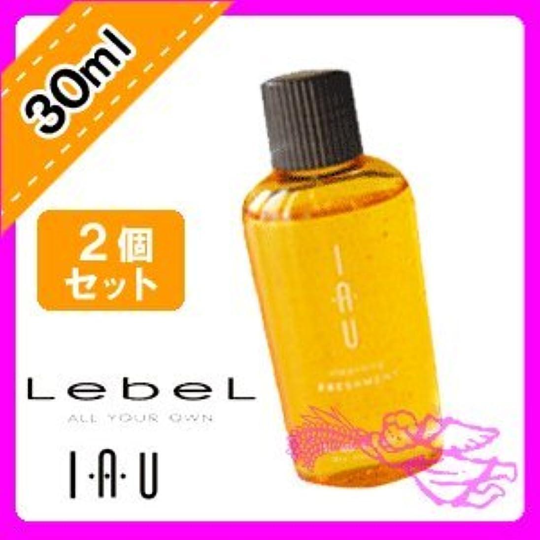 森出発豊かなルベル イオ クレンジング フレッシュメント シャンプー 30ml ×2個セット Lebel iau