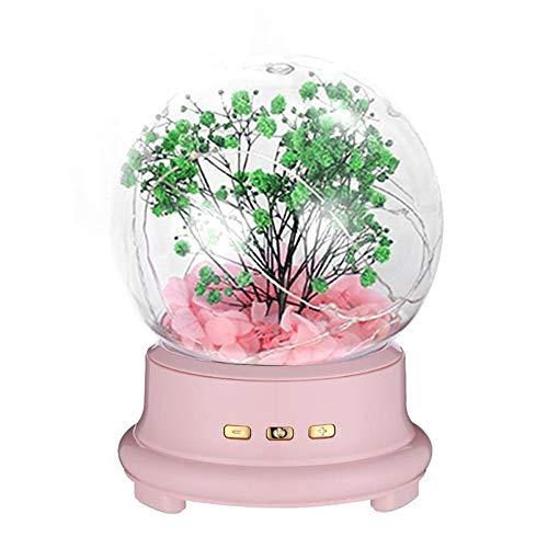 Z.L.FFLZ Vintage Music Box LED-Schnur-Licht-Spieluhr Bluetooth Lautsprecher Nachttischlampe TF-Karten-Geschenke Romantische Musik Acryl Musicbox Geburtstag Dekor (Color : Rosa, Size : Fre)