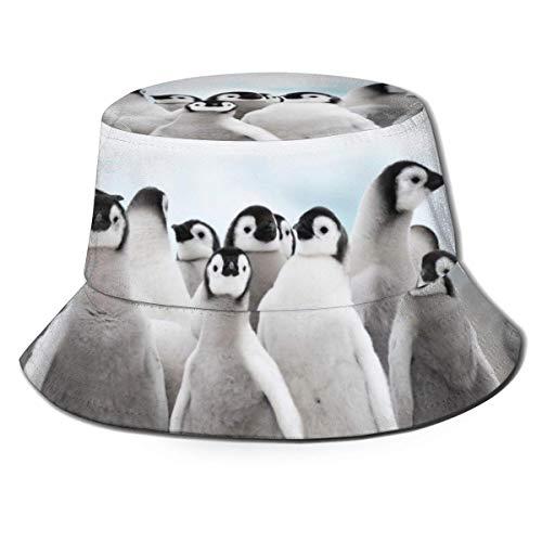 Zhengzho Flat Top atmungsaktive Eimer Hüte Kappe Unisex Kaiser Pinguine Sonnenhut Sommer Fischerhut