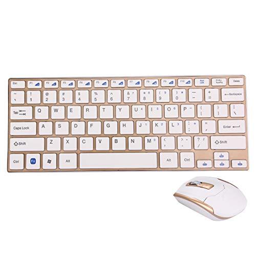 ESports HK3910 2,4 GHz Draadloze 78 Keys Metalen Ultrathin Toetsenbord met Toetsenbord Cover + Draadloze Optische Muis met Ingebouwde USB-ontvanger voor Computer PC Laptop(Zwart). (Kleur: goud)
