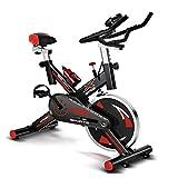 YBZS Bicicleta Estática, Bicicleta Estática Giratoria Ajustable Silenciosa para El Hogar, Pantallaque Muestra La Velocidad, El Tiempo/Calorías Quemadas/Distancia Recorrida, Sillín Deportivo Ajustable