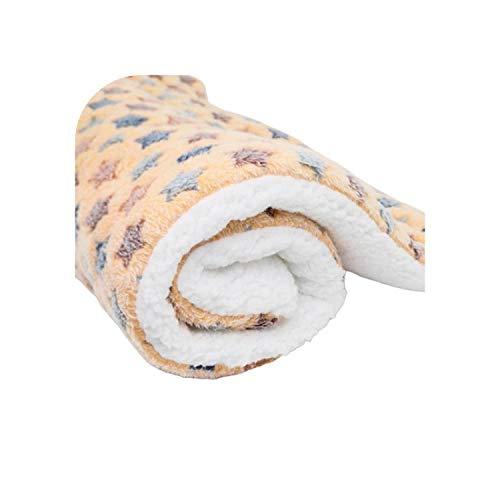 Big Incisors Super Soft Area Teppich  1 Stück L/M/S Sternenhimmel Haustier Plüsch Decke Sofa Pad Waschbar Warm halten Teppich Haustier Herbst Winter Zubehör Weiches Fleece Pad-BS