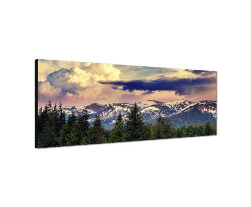 120x40 cm Panorama Wandbild Leinwand (Berge,Wald,Schnee) Panoramabild Bild Bilder Moderne Dekoration zum kleinen Preis! Bild bespannt auf echter Leinwand und Holzkeilrahmen. Made in Germany neu