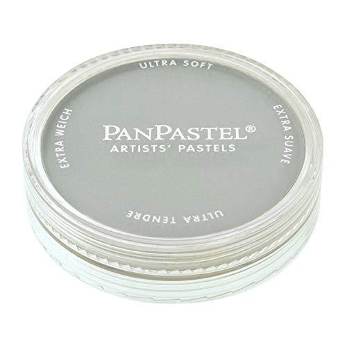 PanPastel - Peinture Pastel pour Artiste - 820.5 Gris neutre