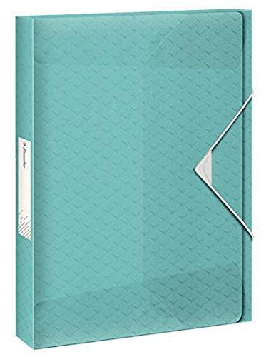 ESSELTE 626264 - Carpeta de proyectos COLOUR'ICE PP lomo 40 mm DIN A4 color azul 🔥