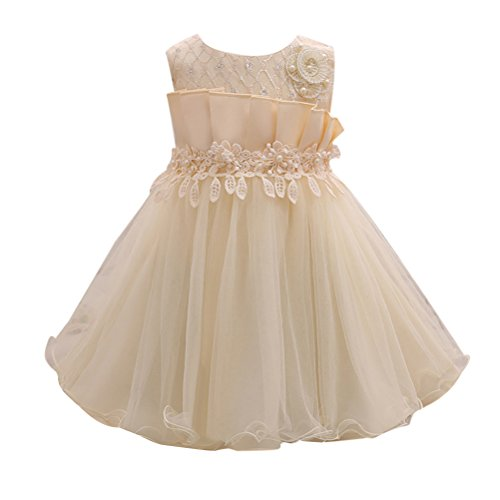 Zhhlinyuan 0-24 Months,Mode Newborn Toddler Baby Girls Sleeveless Crochet Knit Lace Flowers Princess Dress Kids Tulle Party Pageant Wedding Bridesmaid Tutu Dresses