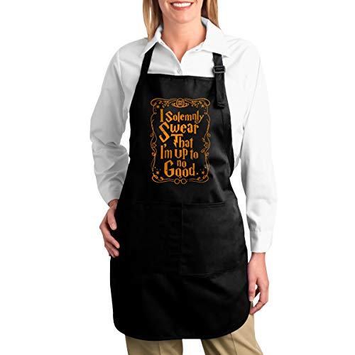 NVJUI JUFOPL Funny Kitchen Chef Apron for Women Men Adjustable Bib Aprons with 2 Pockets for Cooking Baking  I Solemnly Swear That I am Up to No Good