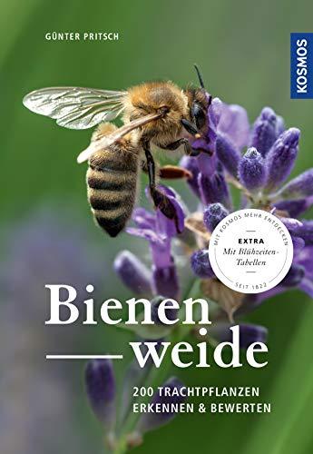 Bienenweide: 200 Trachtpflanzen erkennen und bewerten