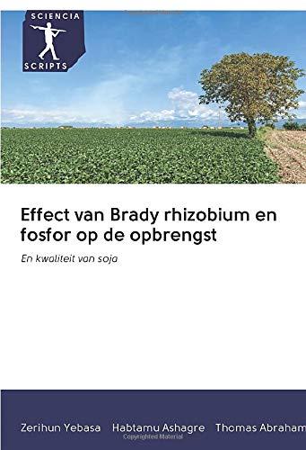 Effect van Brady rhizobium en fosfor op de opbrengst: En kwaliteit van soja