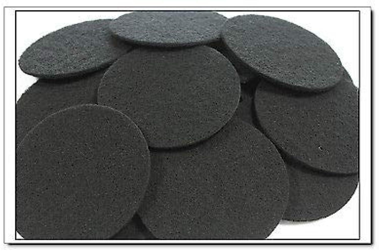 FidgetGear Activated Carbon Filter Pads Suitable For Eheim Classic 2215 350 2628150 48 PCS