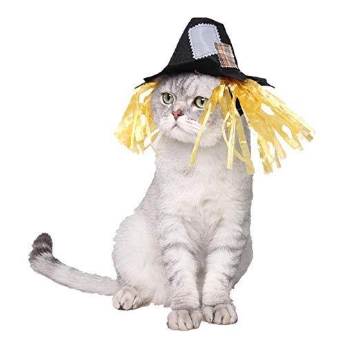 Pssopp kat vogelverschrikker hoed, huisdier hoofddeksels hoed hond kat aankleden cosplay kostuum verjaardag partij halloween vakantie kroon hoed