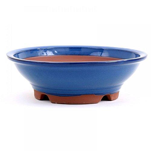Bonsai – Coque Environ 34 x Diamètre 10,5 cm, bleu 40022