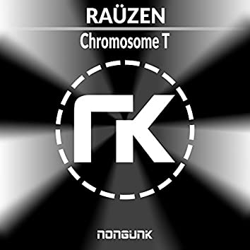 Chromosome T