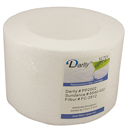 Darlly® Filter Ersatzfilter SC721 Microclean Sundance Spas