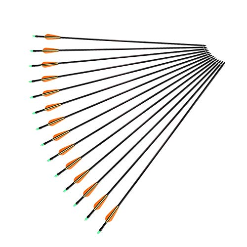 DEWIN Ballesta Pernos Flechas-32 Pulgadas Fibra de Vidrio Caza Práctica Tiro con Arco Compuesto Flechas 12 Unids/Lote