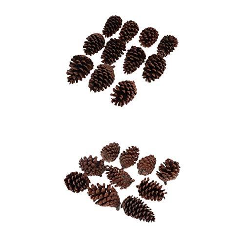 Bonarty 20 Stück Tannenzapfen Schwarzkiefer Zapfen Natürliche Kiefernzapfen Weihnachtsbaum Dekoration