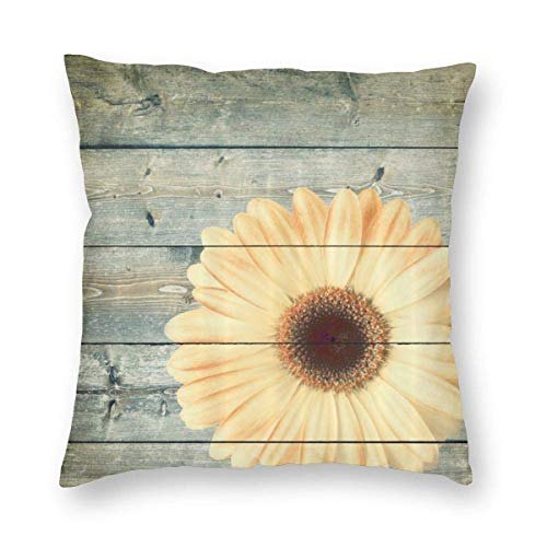 Lawenp Square Throw Pillow Covers,18'x18' 81bx6wlir7l_Ac_Sl1500_ Decorative Cushion Covers Case for Sofa Couch Home Decor