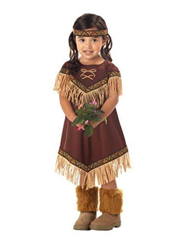 California Costumes Girls Lil' Indian Princess Toddler Costume