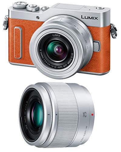 Panasonic ミラーレス一眼カメラ ルミックス GF10 ダブルレンズキット 標準ズームレンズ/単焦点レンズ付属 ...