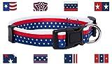 Native Pup American Flag Dog Collar (Large, Flag III)