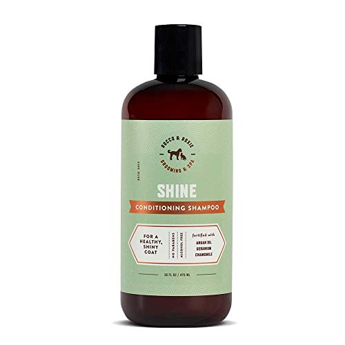 Rocco & Roxie Argan Oil Conditioning Shampoo