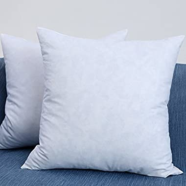 EHOMEBUY Set of 2, 20  x 20  Down and Feather Decorative Throw Pillow Inserts, 100% Cotton Fabric