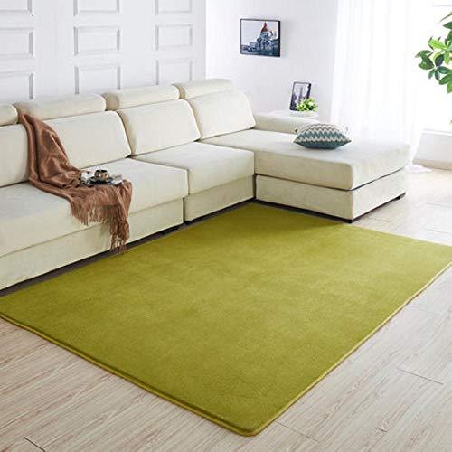 160 x200 Kortharig koraal fluwelen tapijt woonkamer vloermat salontafel mat slaapkamer deken bed vloerkleed vloermat deurkussen, 1.160 x230cm