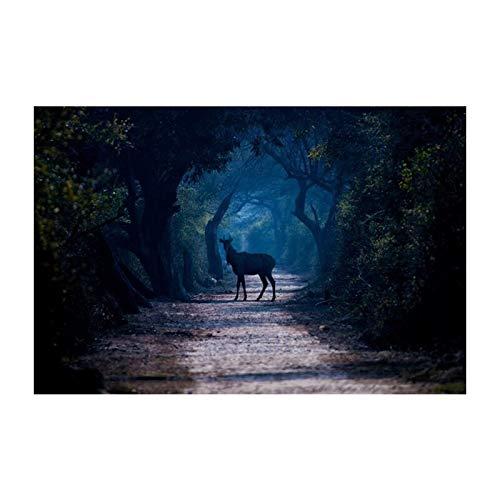 AMtxkj Ciervos y Osos en el Bosque, Lienzo para Pintar mágenes de Pared para la Sala de Estar Decoración Dormitorio Sport Wall Art Canvas-50X70cm-No Frame