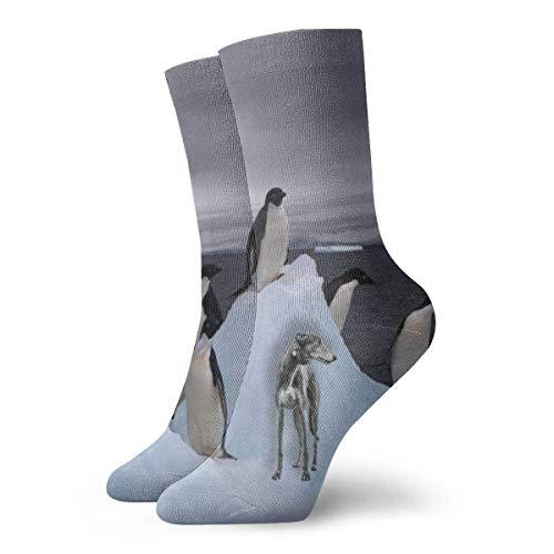 JL85hao Calcetines cortos para adultos con estampado de pingüinos árticos y galgos Calcetines geniales de algodón Senderismo Ciclismo Correr Fútbol Deportes