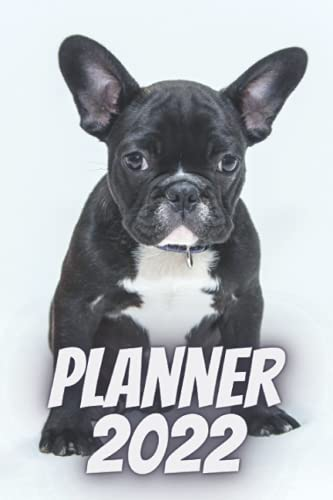 Planner 2022: Weekly, daily, planner 2022 with French Bulldog. Simple organizer. Schedule. White cover. Gift for dogs lovers, animals lovers, kids, ... for dogs fans. Calendar 2022 French Bulldog.