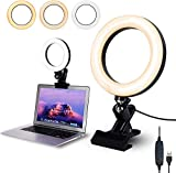 Video Conference Lighting Kit, Light for Monitor Clip On, 6.3' LED Selfie Ring Light for Remote Working, Distance Learning, Zoom Call Lighting, Self Broadcasting and Live Streaming