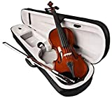 SAI MUSICAL 4/4 violin with case